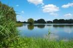 Quelle: Oberlausitzer Heide- und Teichlandschaft